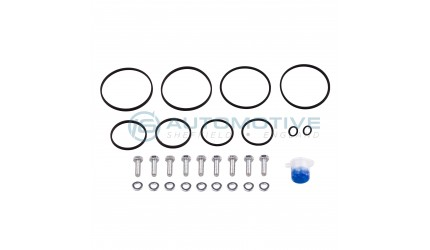 BMW Dual Vanos seal kit
